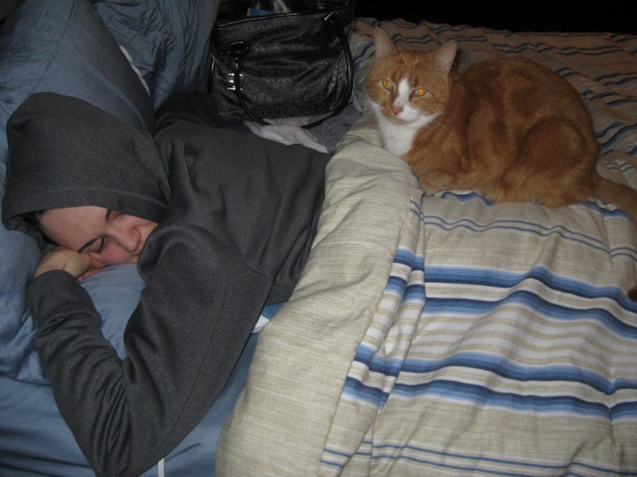 Old habits die hard... Pumpkins' sleeping location of choice: my back.  January 2011